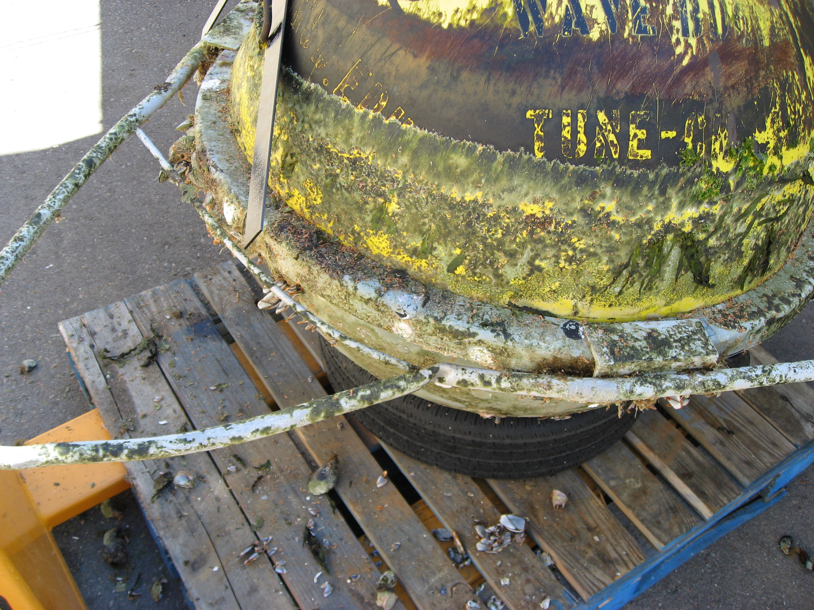 Close view of buoy damage from collision