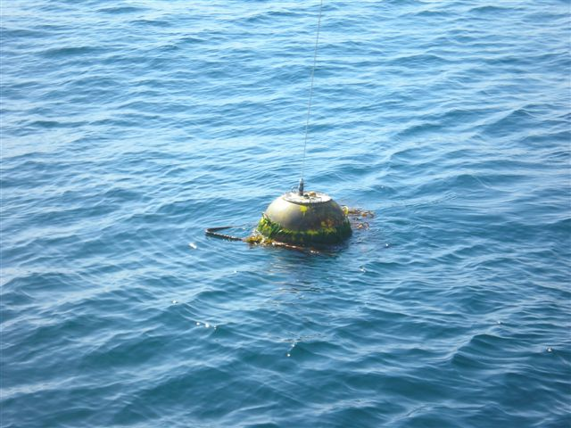 Harvest buoy_ photo from crew of Clean Seas III