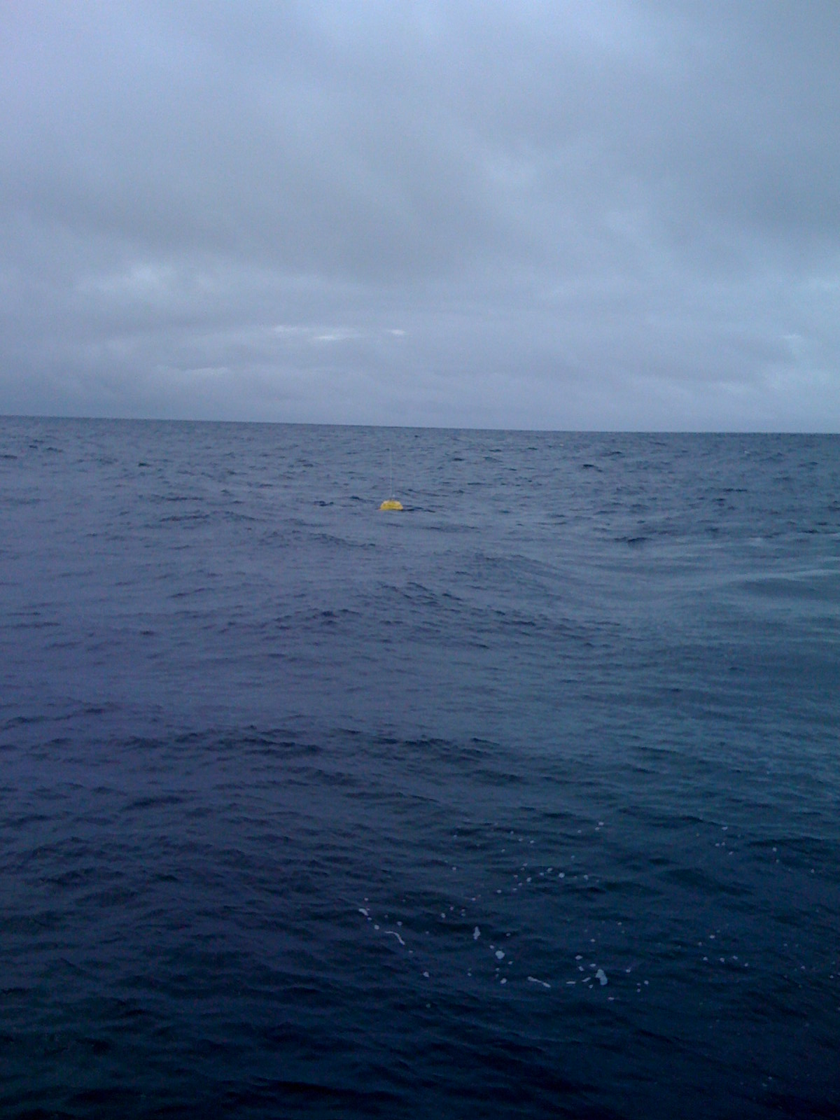 buoy deployed