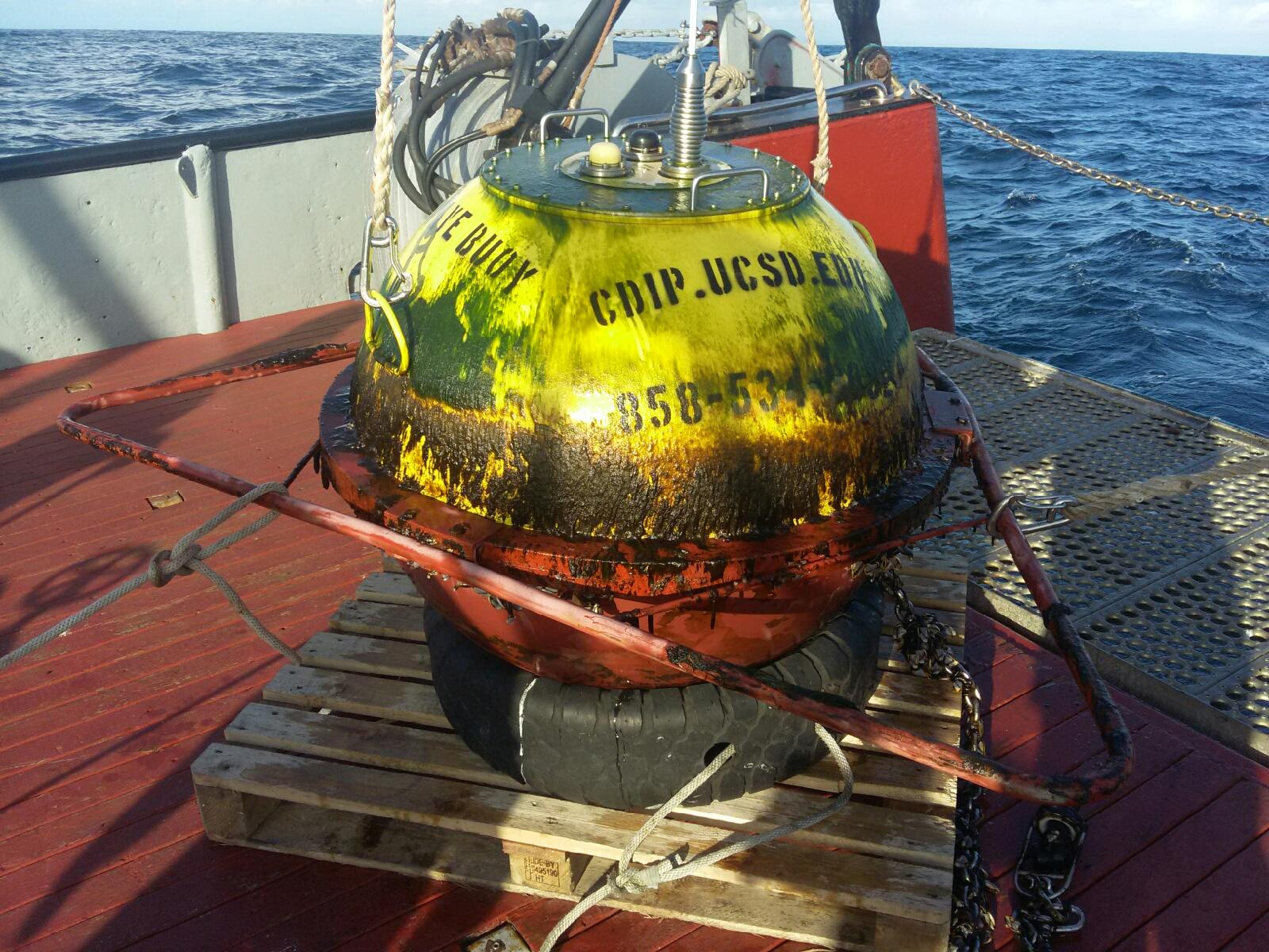 Buoy recovered on vessel