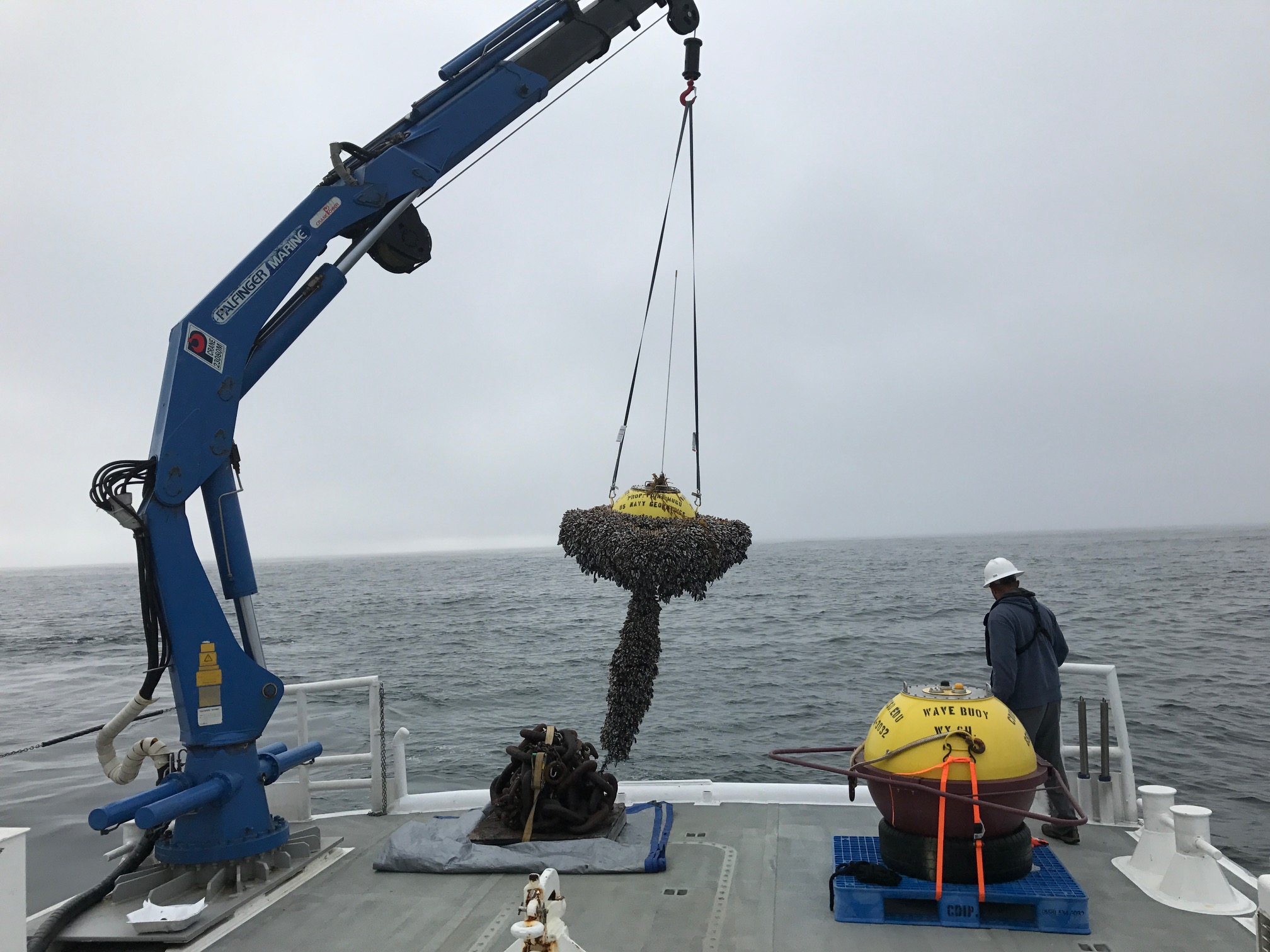 Buoy removal - deployment