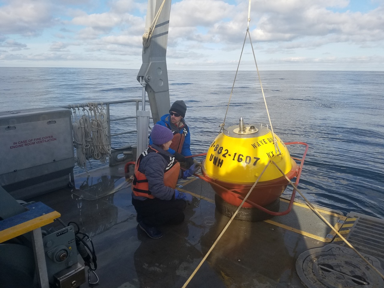 Buoy antenna replacement