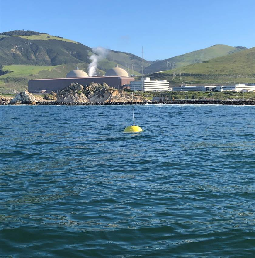 Newly deployed buoy
