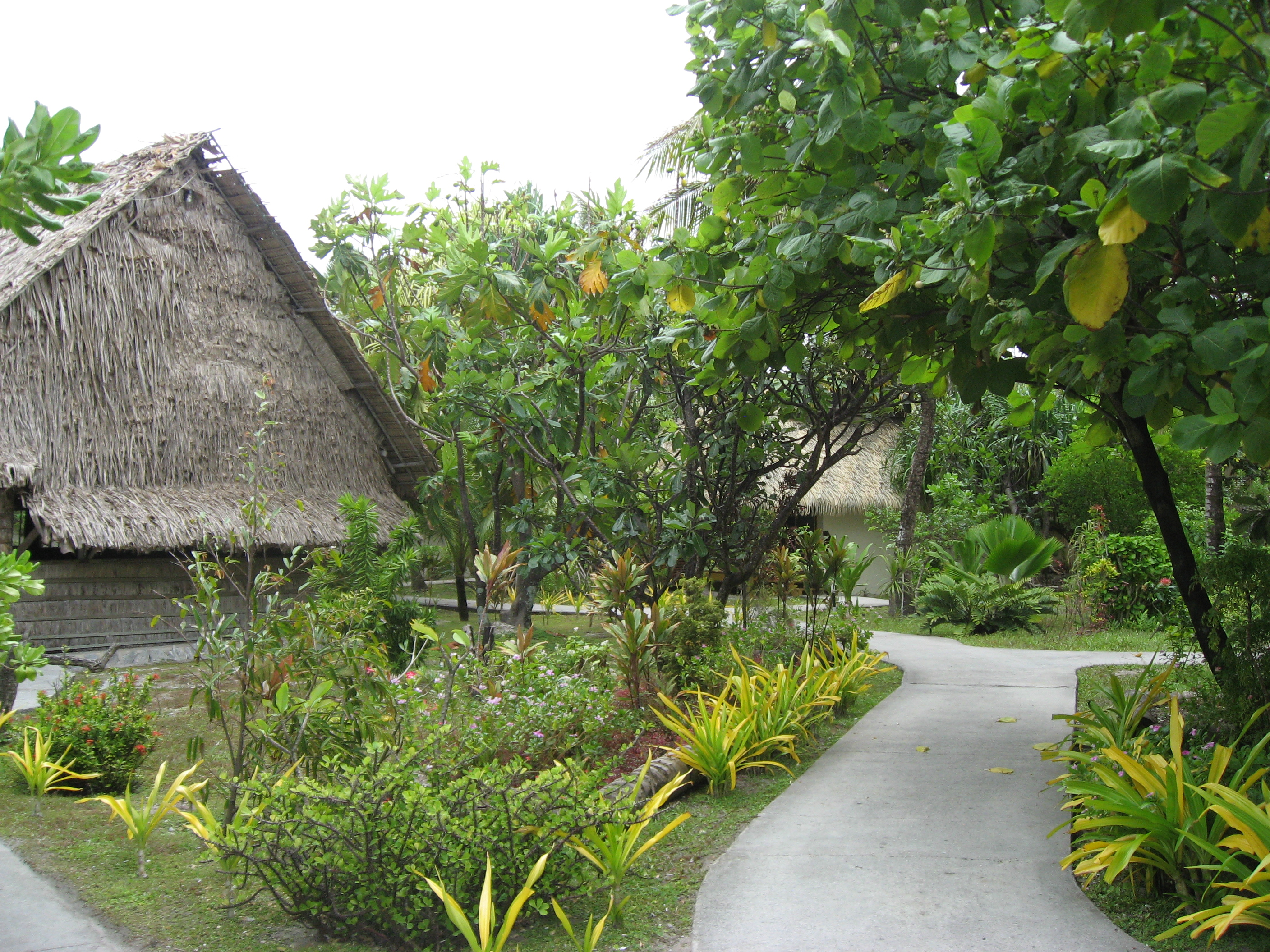 traditional grass thatched hut