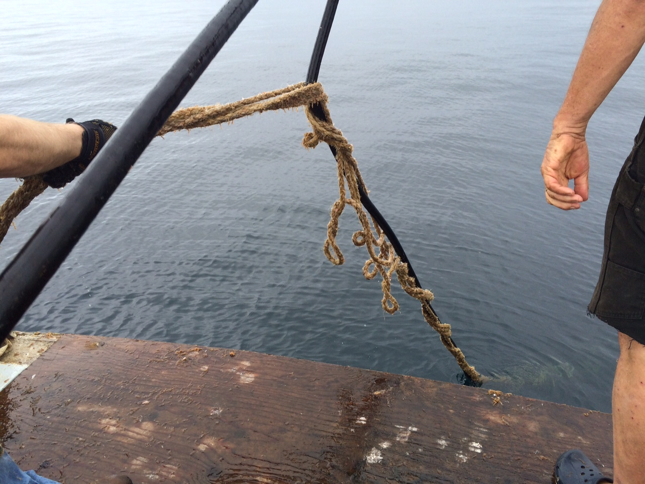 Trying to separate entangled moorings